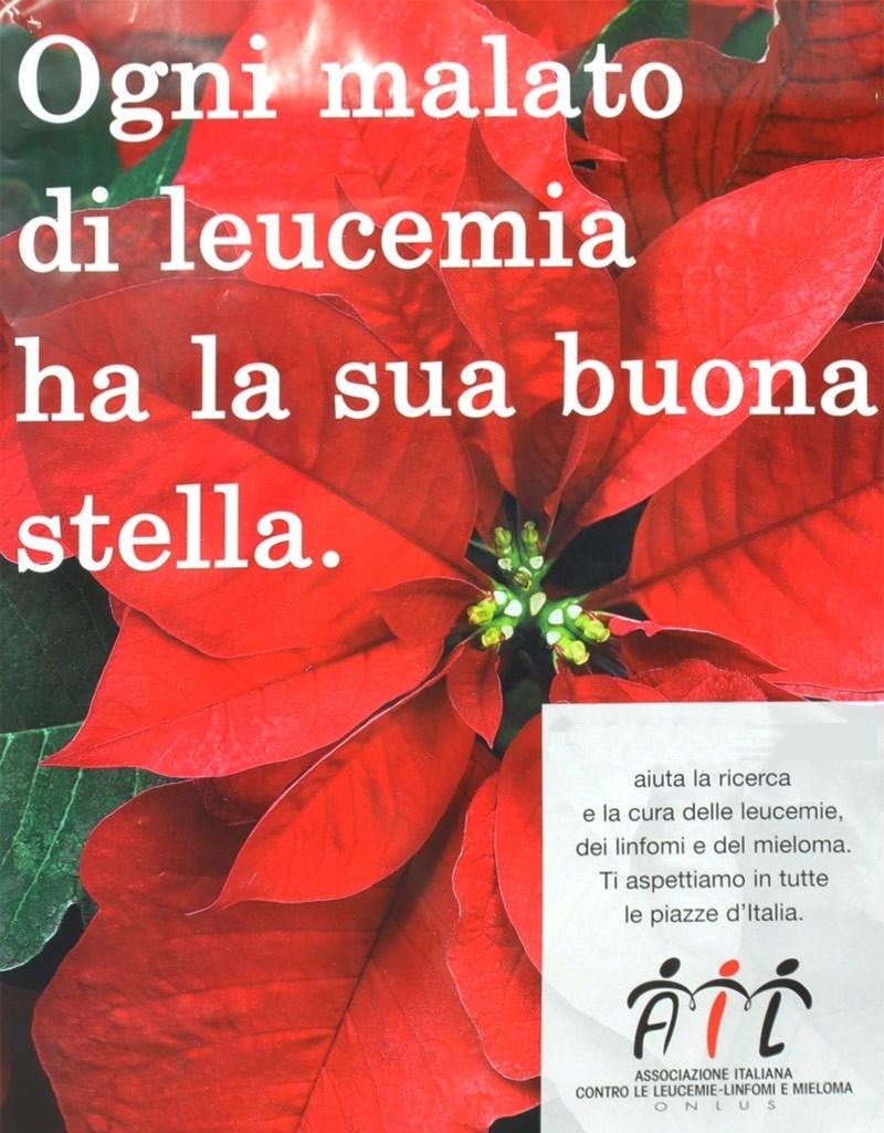 Stella Di Natale Piazze Italiane.Alcamo Lotta Alle Leucemie Ail Vendite In Piazza Ciullo